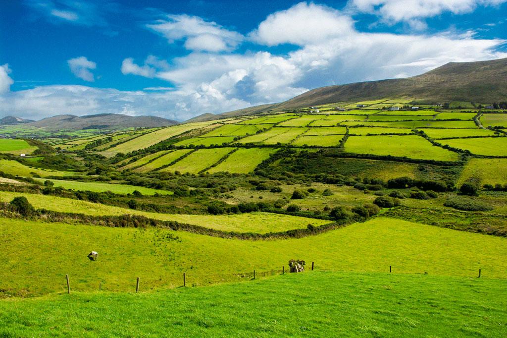 Land Insurance - The Home Insurer