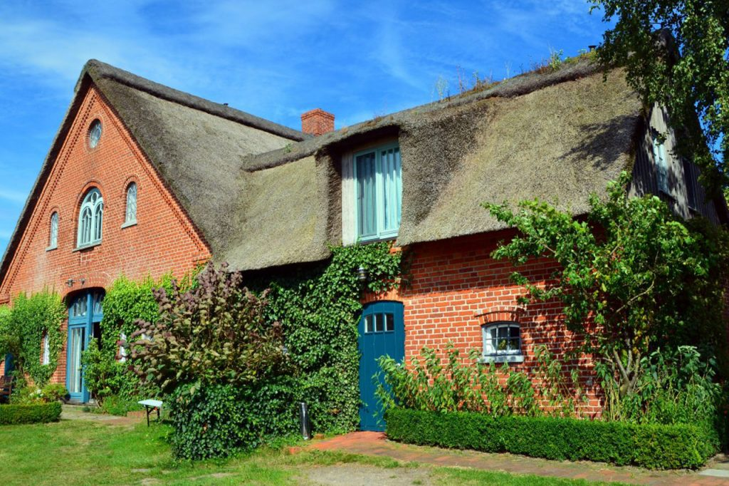 Thatched Insurance - The Home Insurer